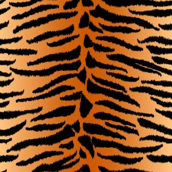 Stickers carrelage animal tigre