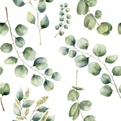 Stickers carrelage feuille eucalyptus
