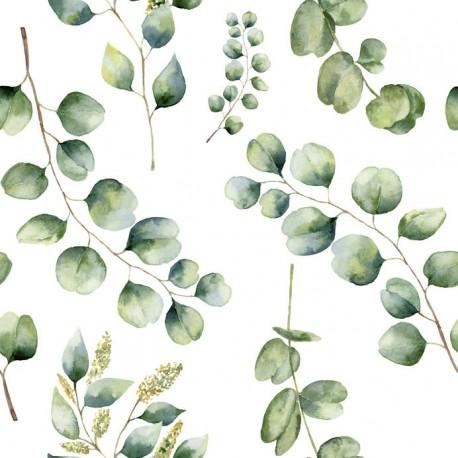 Stickers carrelage feuille eucalyptus
