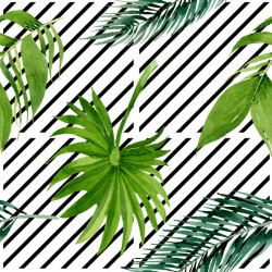 Stickers carrelage feuille tropicale